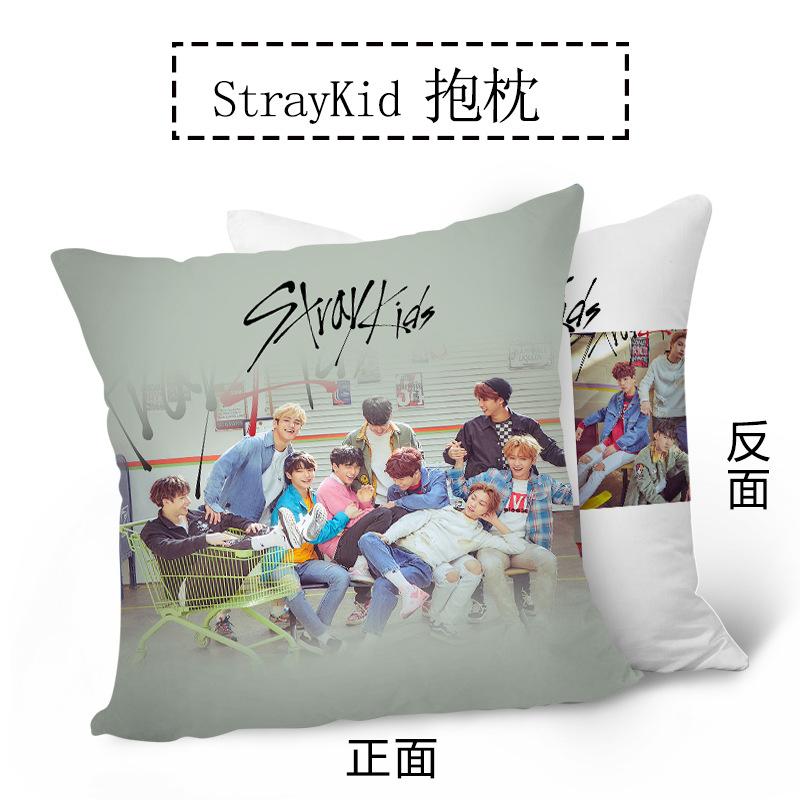 หมอนอิง - Stray Kids