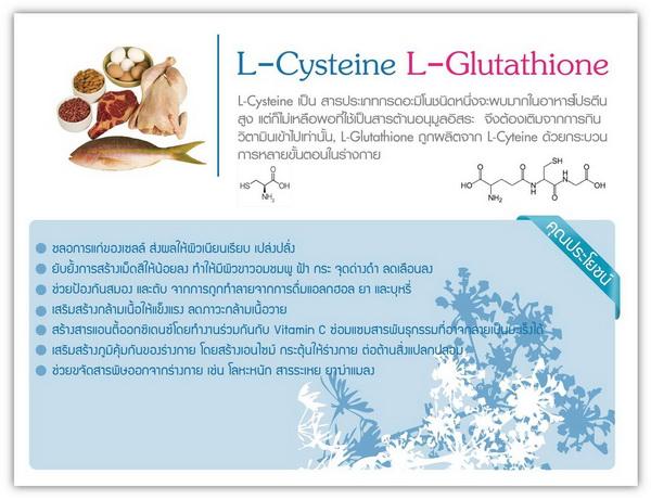 ผลิตภัณฑ์อาหารเสริมสเต็มเซลล์