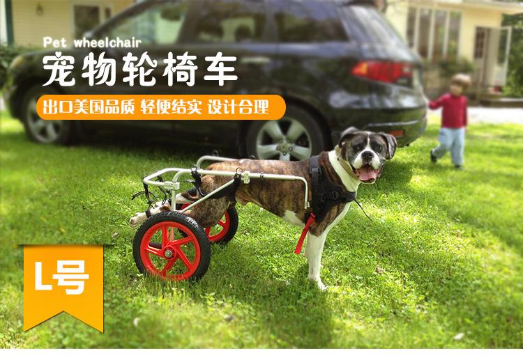 รถเข็นวีลแชร์สำหรับสัตว์เลี้ยง รุ่น xL : สำหรับสุนัขขนาดใหญ่ที่มีน้ำหนักเกินกว่า 45 กก.
