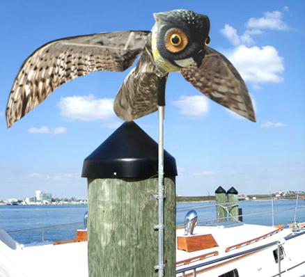นกฮูกจำลองเคลื่อนไหวตามแรงลม ไล่นก ป้องกันนก