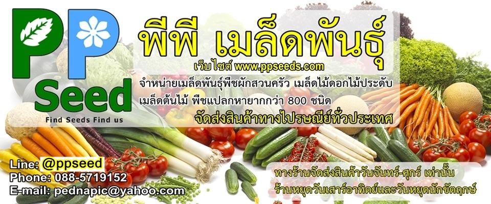 พีพี เมล็ดพันธุ์ - PP Seed Store