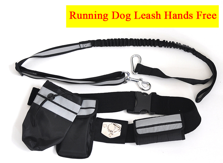 สายจูงสุนัขสำหรับวิ่ง