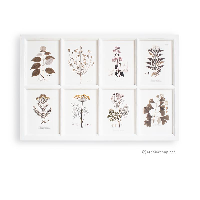ภาพพิมพ์ลายดอกไม้และใบไม้ 8 ช่อง กรอบไม้สีขาว