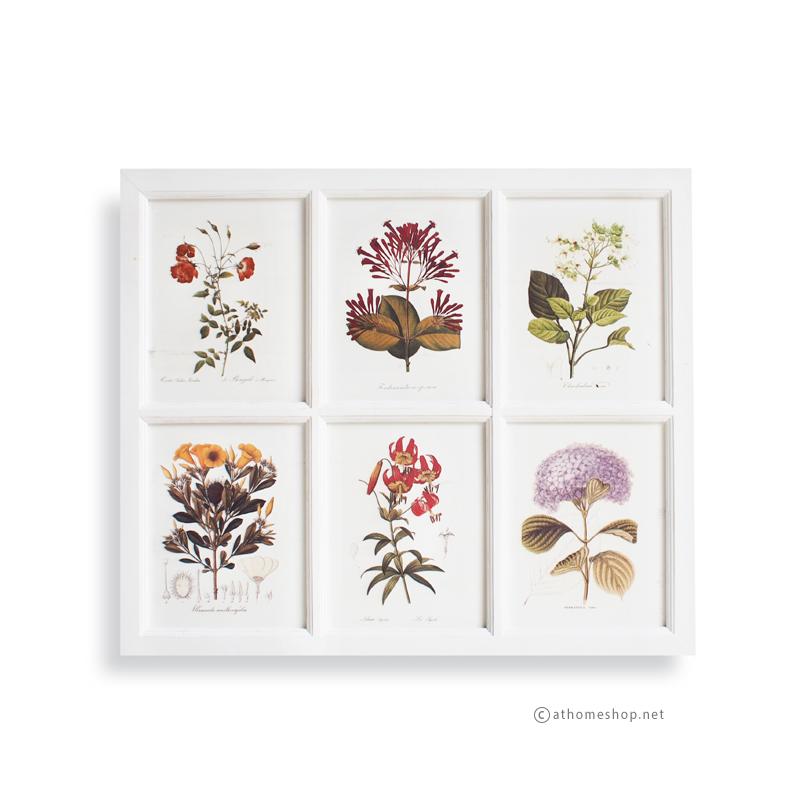 ภาพพิมพ์ลายดอกไม้ 6 ช่อง กรอบไม้สีขาว