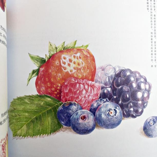 (พร้อมส่ง) PCFRUIT: สีไม้กับผลไม้นานาชนิด