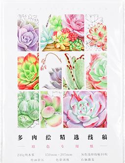 กระดาษดราฟร่างเบา แบบฝึกหัดภาพระบายสี ภาพพืชอวบน้ำ Succulent
