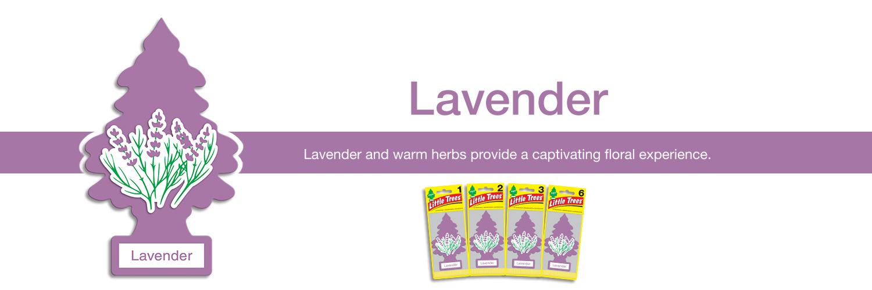 Little Trees Air Freshener - Lavender
