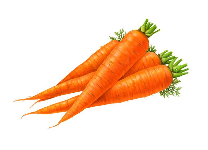 หัวน้ำหอม กลิ่นแครอท Carrot