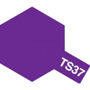 TS-37 lavender