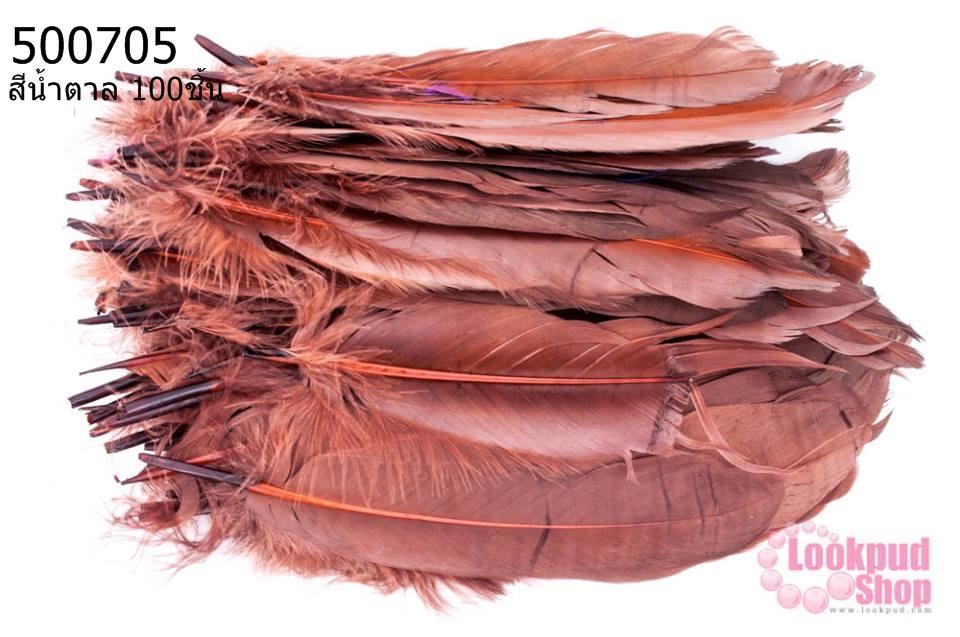 ขนนก(ก้าน) สีน้ำตาล 100ชิ้น