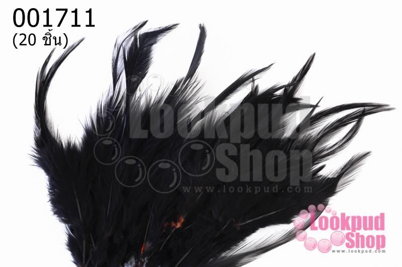 ขนนก สีดำ 20 ชิ้น