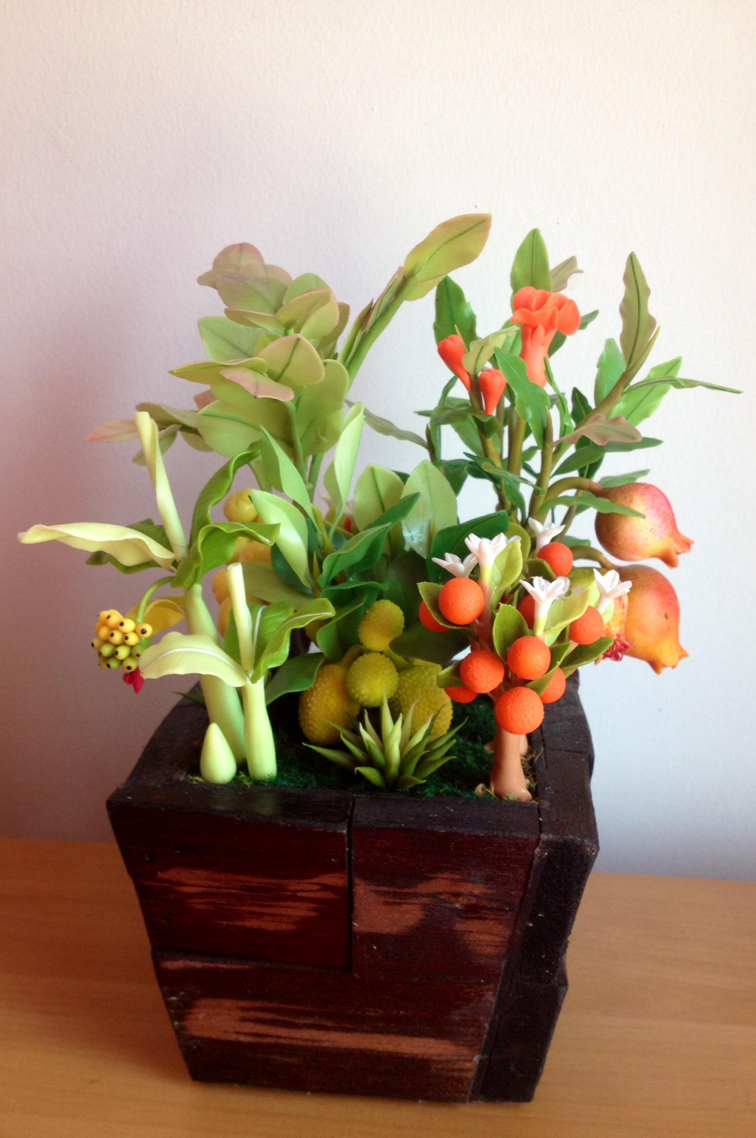 C019-สวนต้นไม้มงคล ทับทิม มะยม ส้ม กล้วย ขนุน_ไซร์ 3-6 นิ้ว