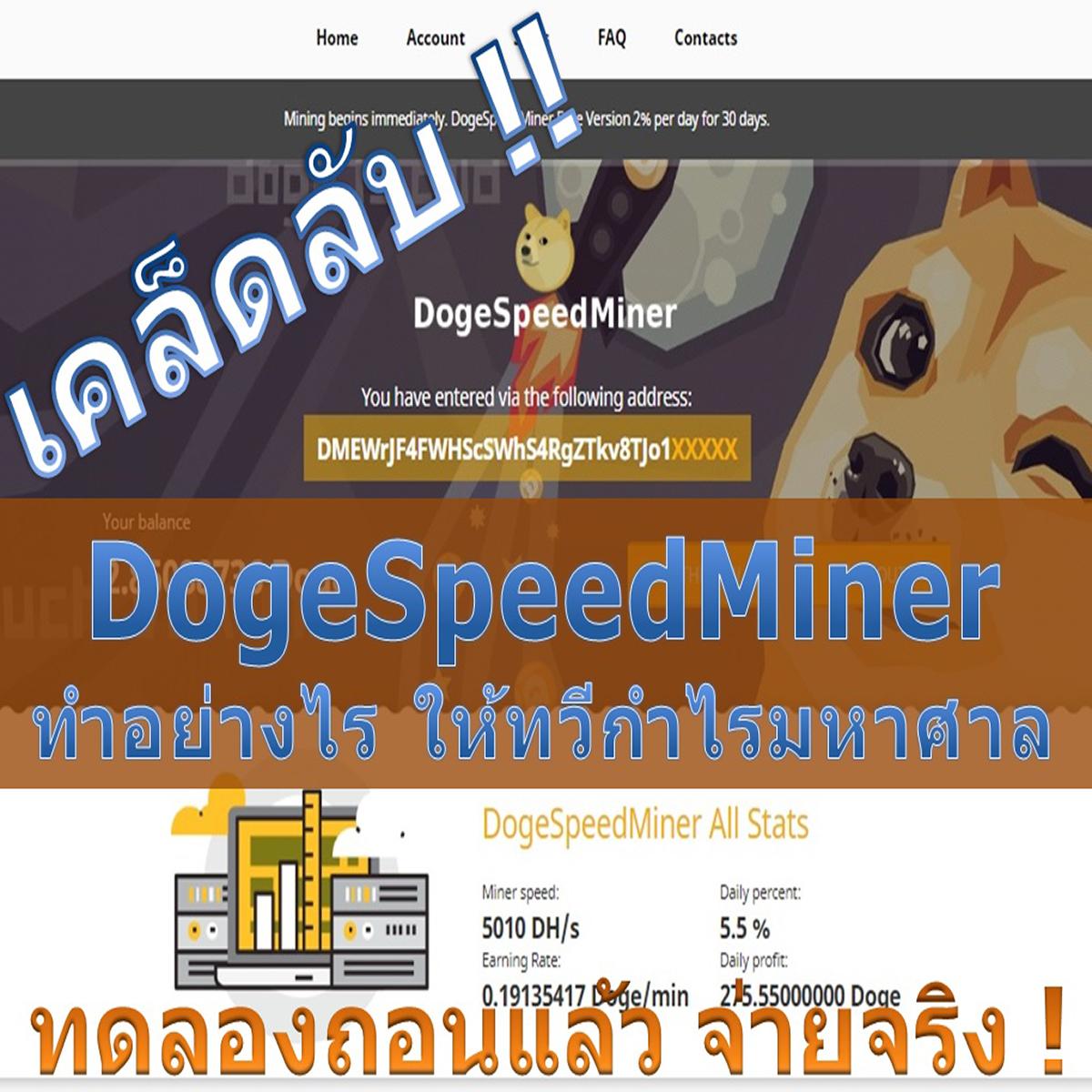 DogeSpeedMiner ทำอย่างไร ให้ทวีกำไรมหาศาล