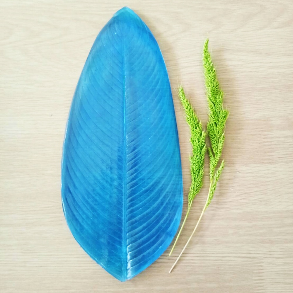 Heliconia leaf 2