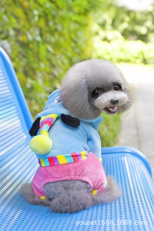 ชุดน้องหมาสี่ขาhoodหมีสีฟ้า Size M
