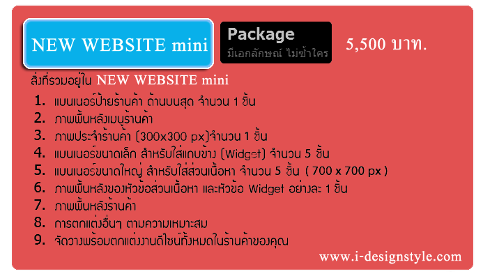 NEW WEBSITE MINI PACKAGE