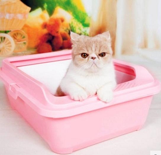 กระบะทรายแมว 2 ชั้น