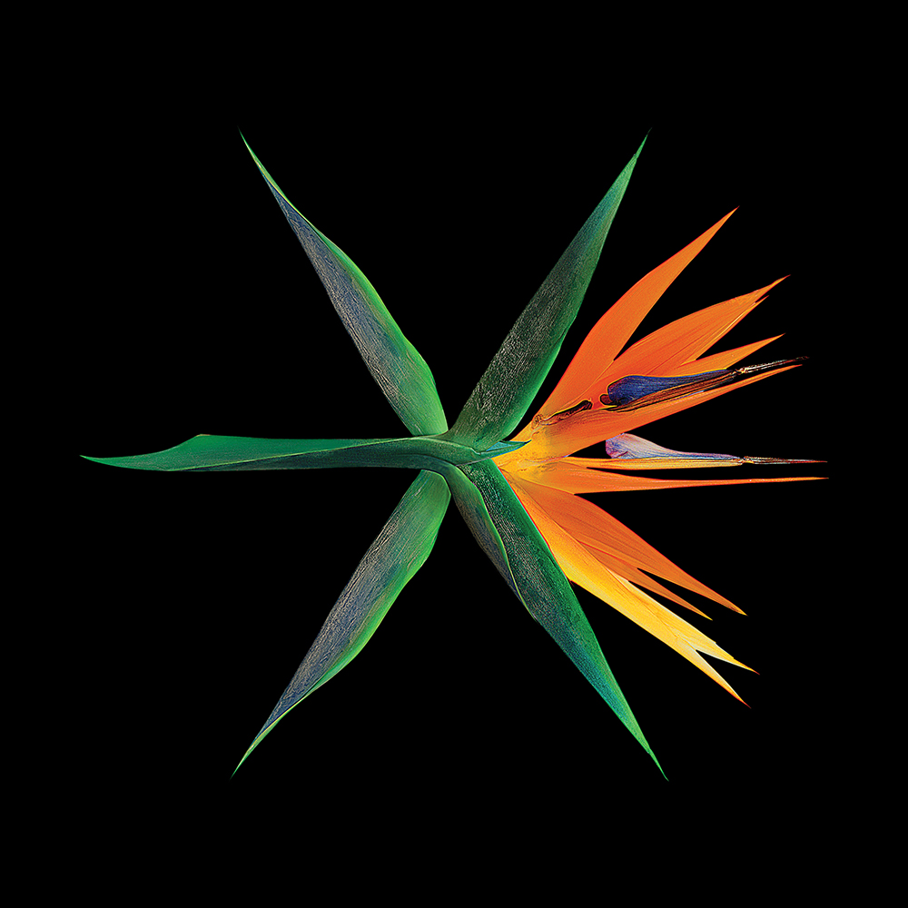[Pre] EXO : 4th Album - The Wars (Chinese Ver.) (Random Ver.) +Poster