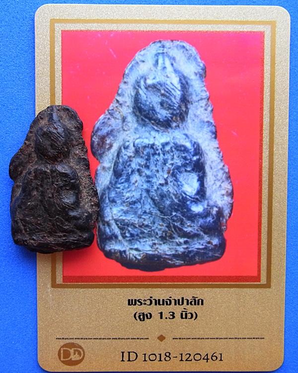 597 พระว่านท่ามะปรางค์ เนื้อว่านจำปาศักดิ์ มีบัตรรับรองพระแท้